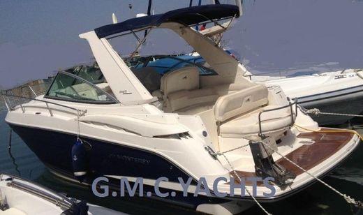 2010 Monterey 295 Cruiser