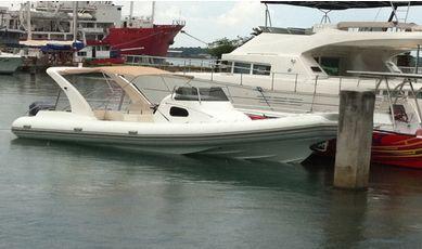 2012 Lianya Rib Boat HYP830