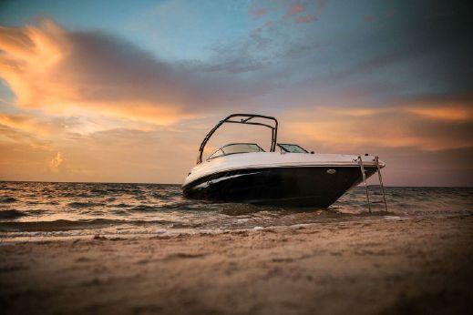 2016 Sea Ray 240  Sundeck   11557