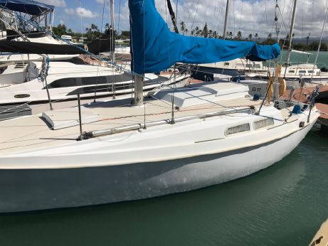 1970 Newport Sloop