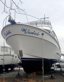 1982 Oceania Trawler 41