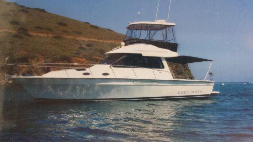 1996 Mediterranean 38 Convertable Sportfisher