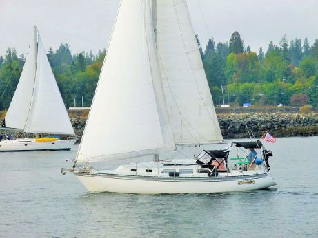 1982 Newport Sloop
