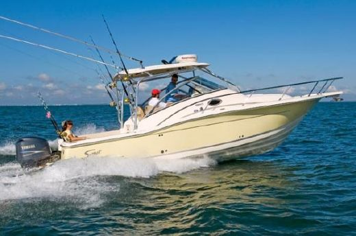 2008 Scout Boats 295 Abaco