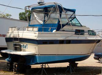 1987 Baha Sport Express Cruiser
