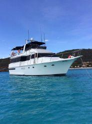 1988 Viking Sport Cruisers 63 Motor Yacht