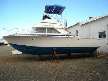 1977 Bertram 28 Sport Fisherman