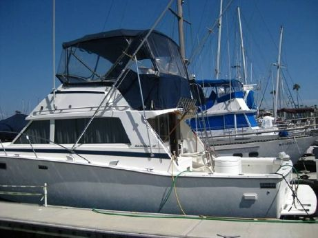 1981 Bertram 38 Sport Fisherman