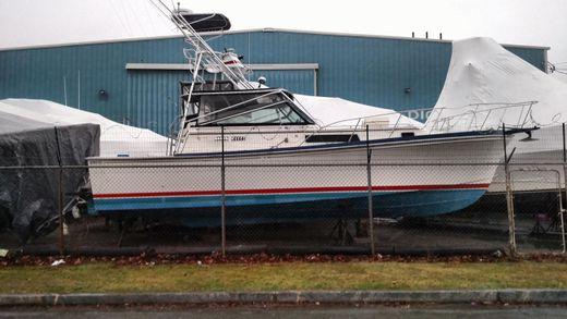 1989 Shannon Brendan 32 Diesel Sportfish Tower