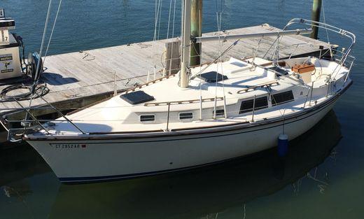 1982 Allmand Sail 31
