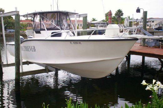 1993 Ocean Master 31 Walkaround