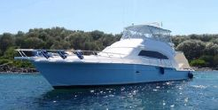 2006 Bertram 570