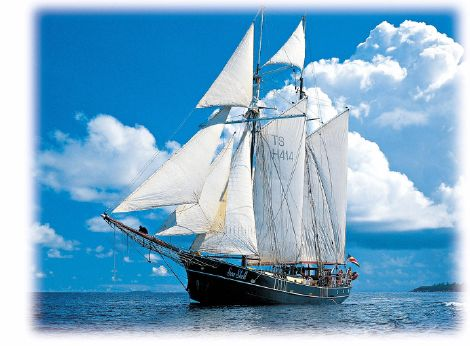 1920 Dutch Built Tall Ship