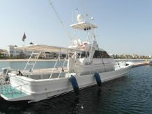 2007 Yanmar Sport Fisher