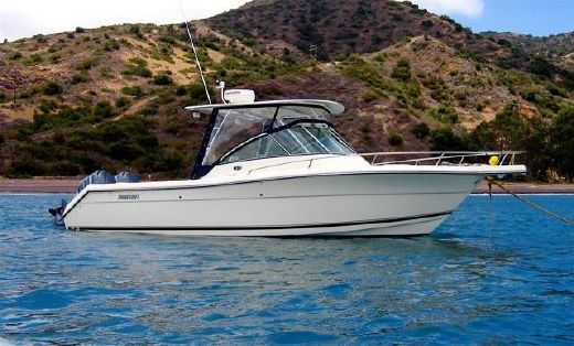 2005 Pursuit 2670 Denali LS