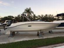 2019 Sea Ray SPX 230 Outboard