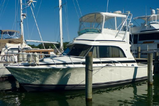 1990 Bertram 33 Flybridge Cruiser