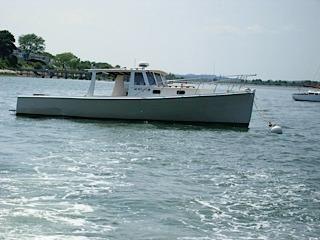 1965 Novi Picnic Boat