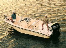 2003 Boston Whaler 18 Dauntless