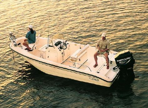 2002 Boston Whaler 18 Dauntless