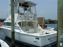 1985 Bertram 33 Flybridge Cruiser