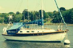 1987 Golden Hind 31