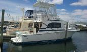 photo of 33' Bertram Flybridge Cruiser NEW  Cummings