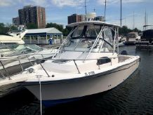 2001 Grady White Sailfish 282