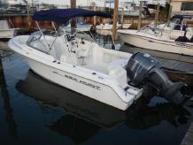 2007 Sea Hunt 220 Escape