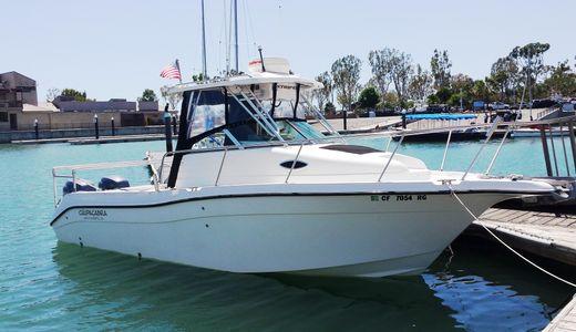 2005 Seaswirl 2601