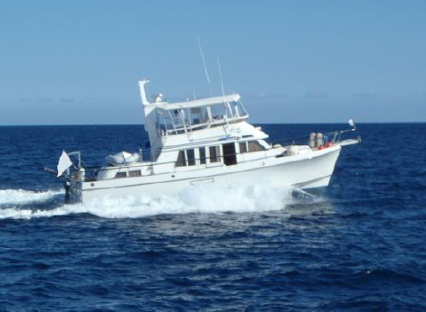 1996 Ocean Alexander 423 Classicco