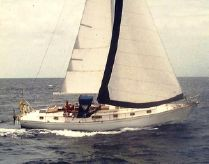 1979 Kelly Peterson 44