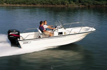2006 Boston Whaler 170 Montauk