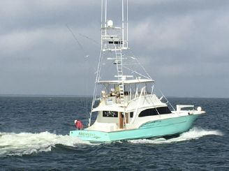 thumbnail photo 1: 1989 Buddy Davis 61 Sportfish
