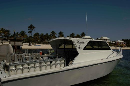 2000 Sea Hawk SH36 Diving