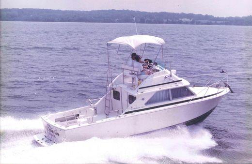1975 Bertram Flybridge Cruiser