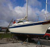 1977 Bayfield 32C