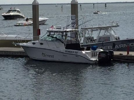 2004 Seaswirl Striper 2901 Walkaround O/B