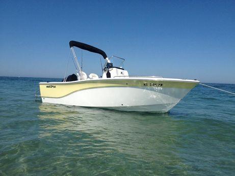 2010 Sea Fox 206CC Pro Series