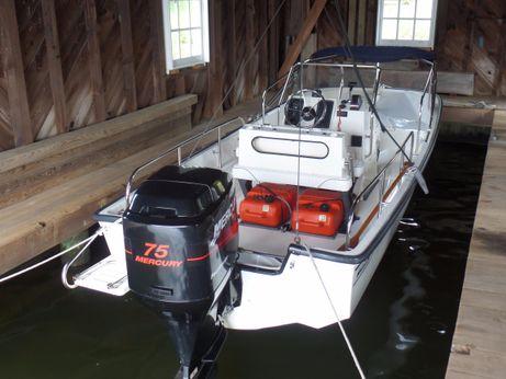 1999 Boston Whaler Montauk 17 CC