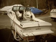 1988 Wellcraft 25 walkaround