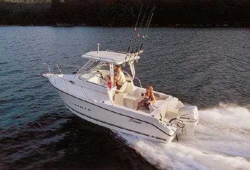 2001 Seaswirl Striper 2101 Walkaround OB