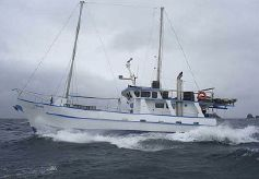 1981 Fiordland Charter Boat and Business