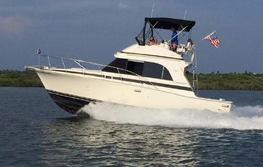 1987 Bertram 33 Flybridge Cruiser