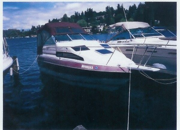 1990 Campion Victoria 230 Sb Power Boat For Sale Www