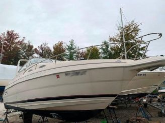 1999 Wellcraft 2600 Martinique