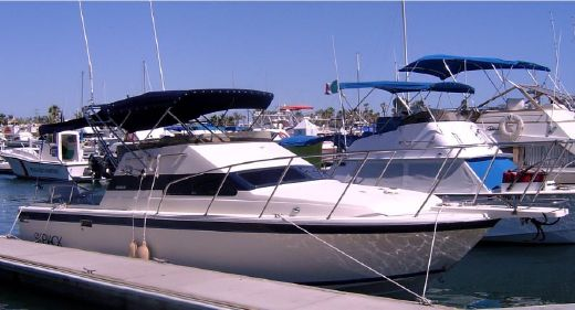 1990 Skipjack Flybridge 28 with Trailer