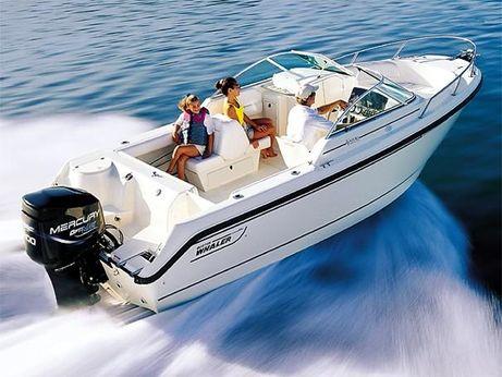 2002 Boston Whaler 21 Ventura