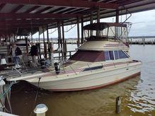 1981 Sea Ray 300 Sedan Bridge