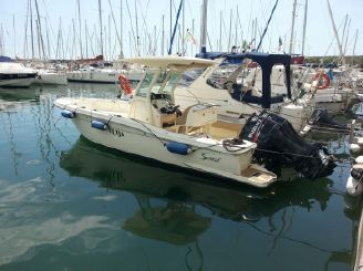 2013 Scout Boats 240 XSF